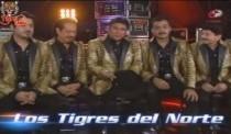 Vida de Tigres: Luis