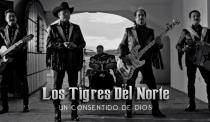"""Los Tigres del Norte dedican a Vicente Fernández """"Un consentido de Dios"""""""